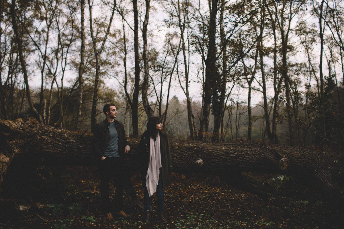 ampfield forest engagement shoot